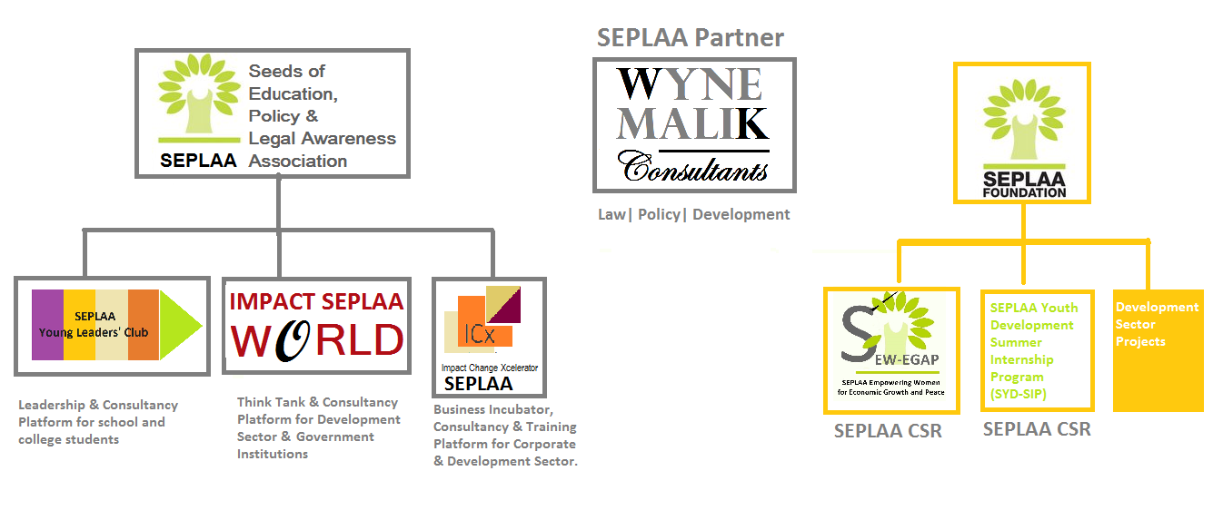 seplaa & sf cover & structure